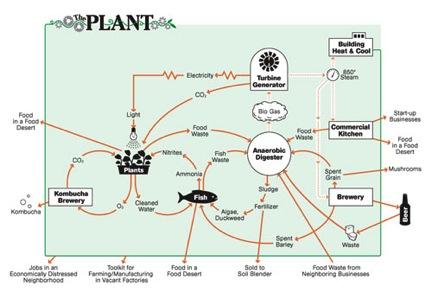 theplantdiagram.jpg